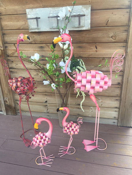 Flamingo Family!