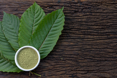 Why Is Kratom So Popular?