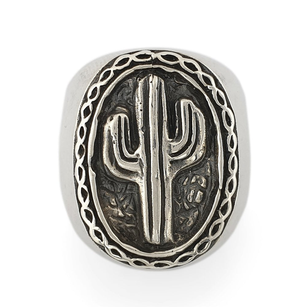 Load image into Gallery viewer, Ring Brass Cactus Silver 925 front