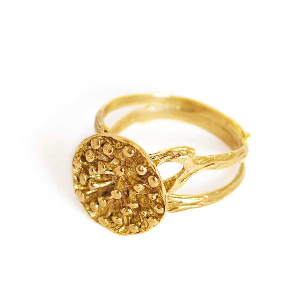 Load image into Gallery viewer, Ring Lotus Seeds Big Gold