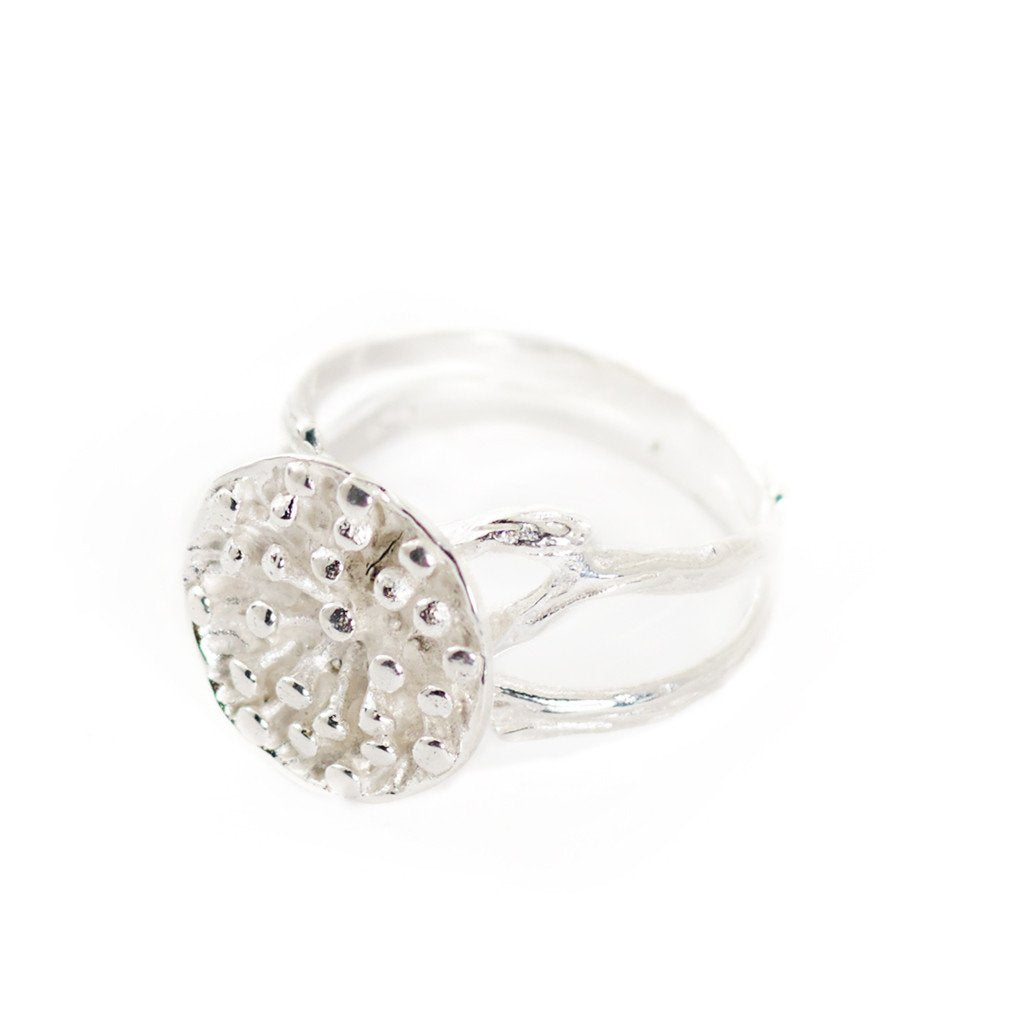 Ring Lotus Seeds Big Silver