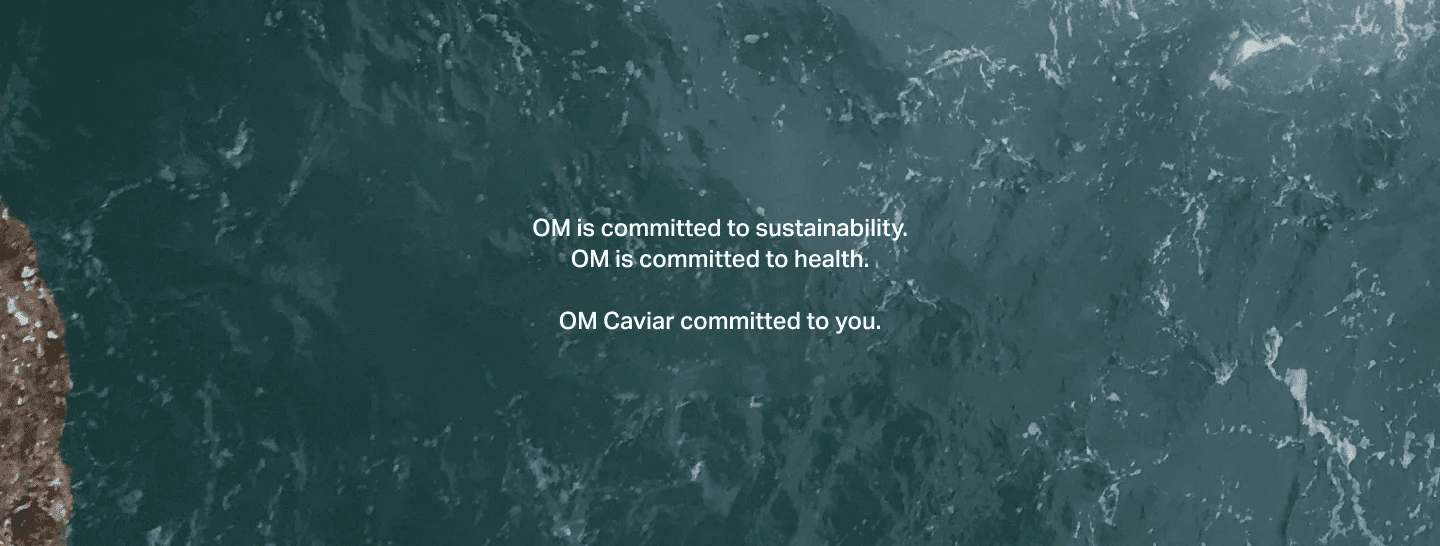 image of the sea including OM Caviar commitments
