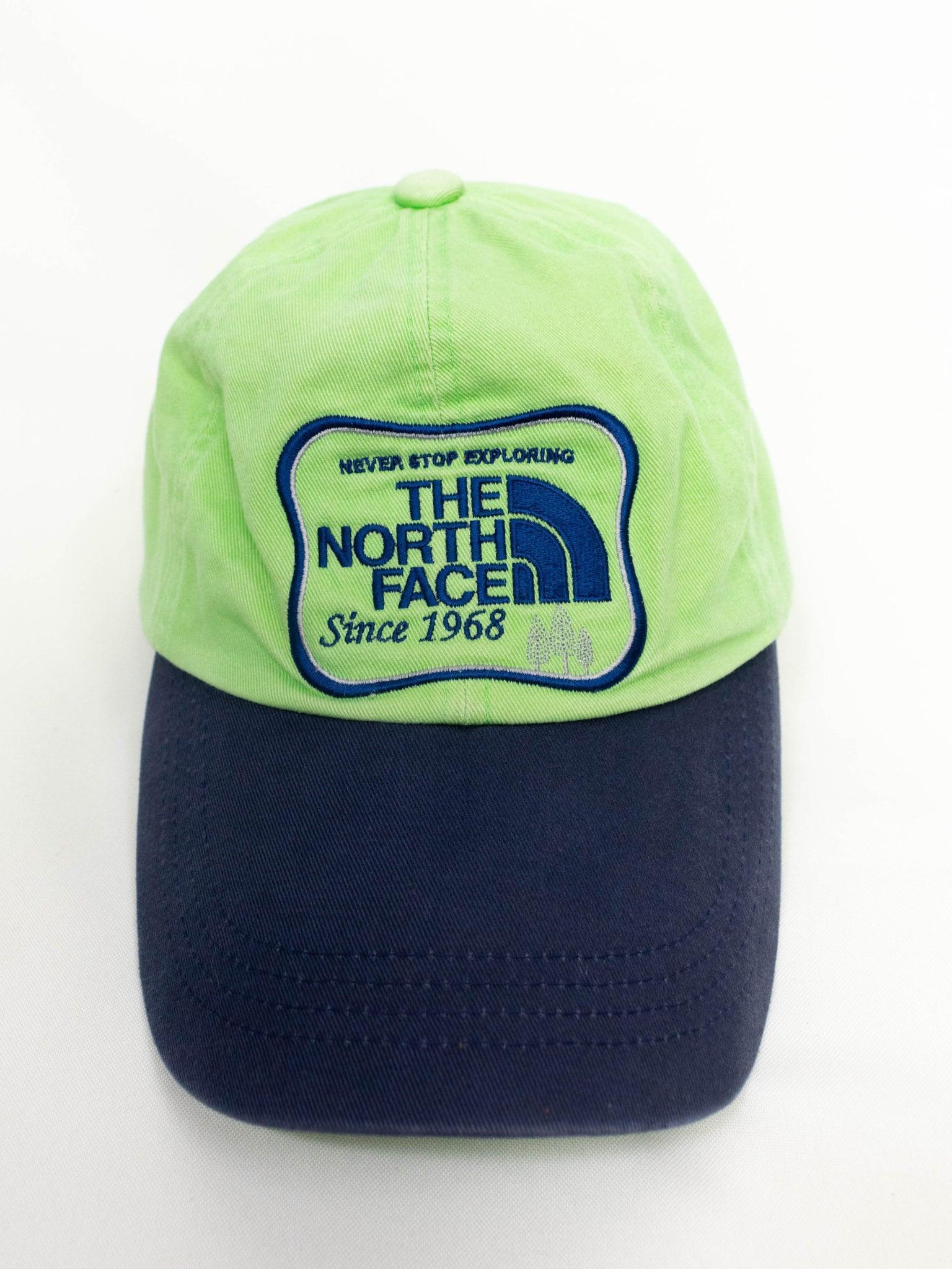 Vintage The North Face Hat