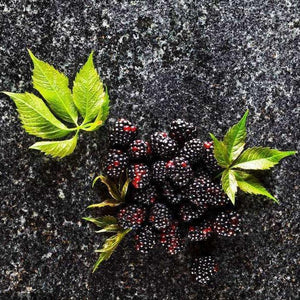 200Pcs Blackberry Fruit Seeds Home Garden Plantting Perennial Potted Sweet Fruit Seed