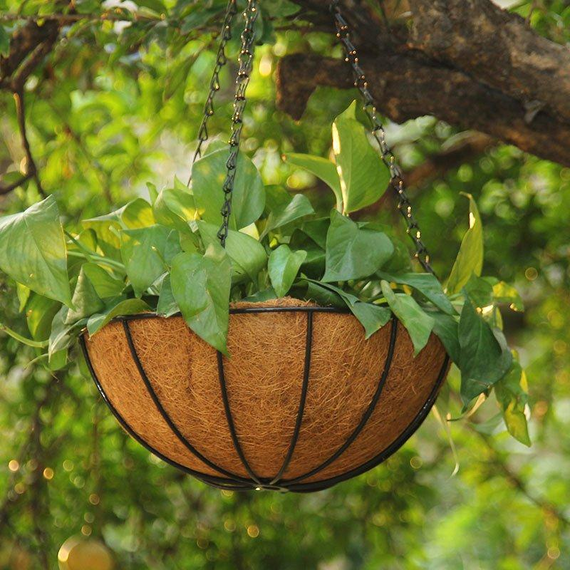 Metal Hanging Planter Basket with Coco Coir Liner Flower Pots Hanger Garden Decoration