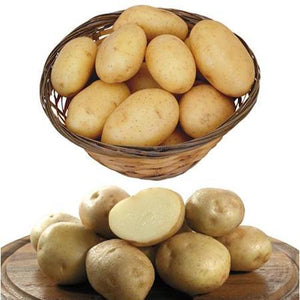 100 Pcs/Pack Potato Seeds for Home Garden Planting