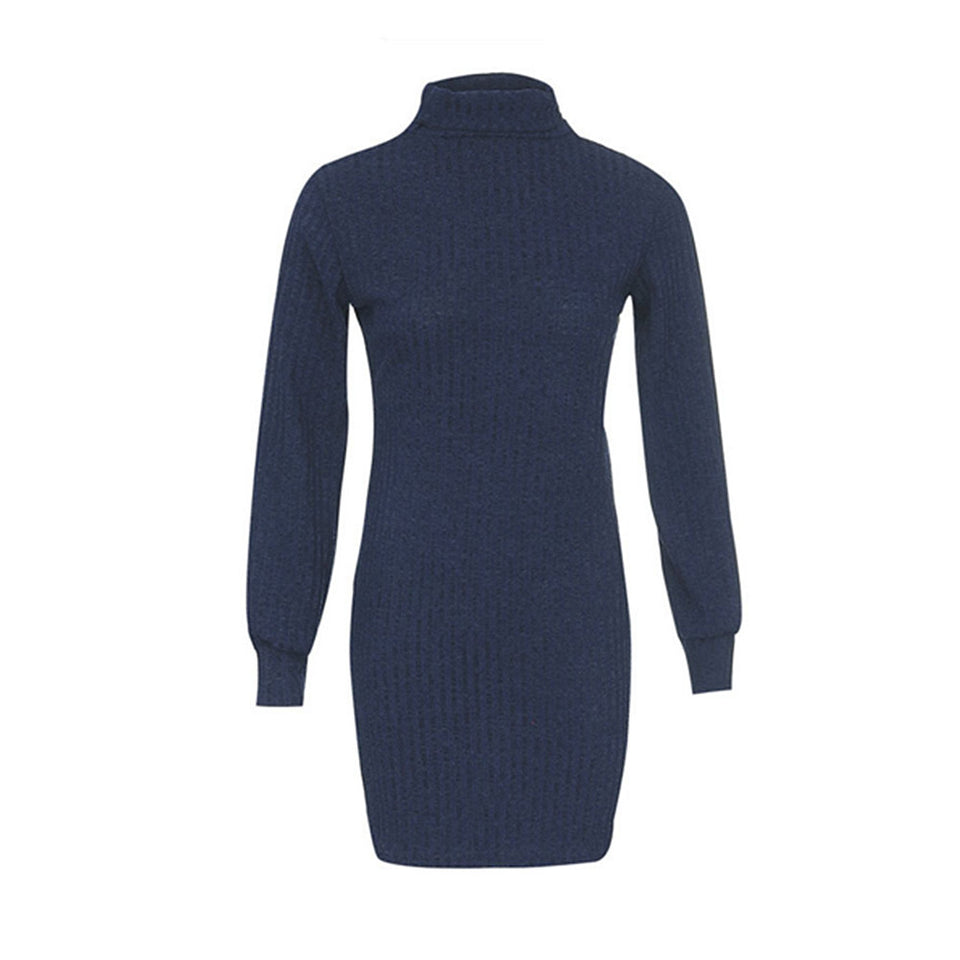 Mini Turtleneck Dress