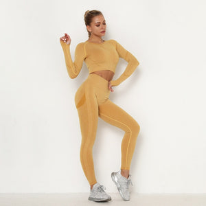 Seamless Women Sport Set For Gym Long Sleeve Top High Waist Belly Control Leggings Clothes Seamless Sport Suit Sexy Booty Girls