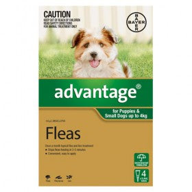Advantage Small dog and Puppies flea control 4pk