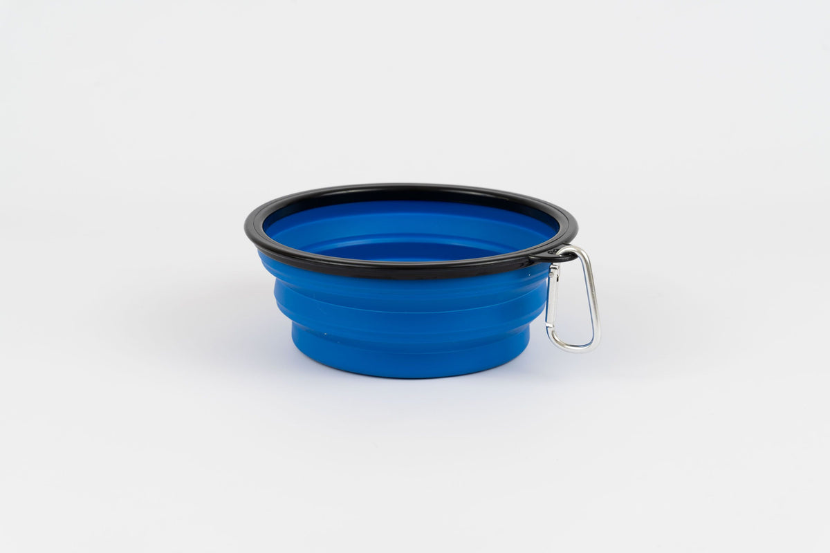 Pop Up Bowl Blue