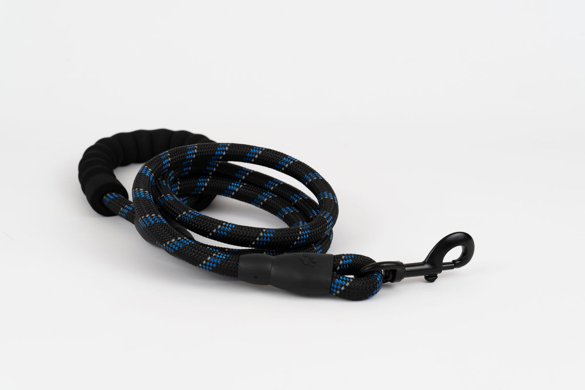 Black Blue sport leash