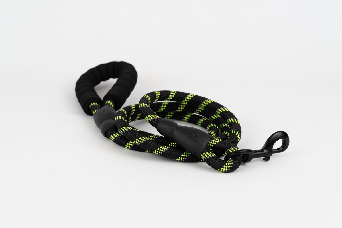 Sport leash black neon