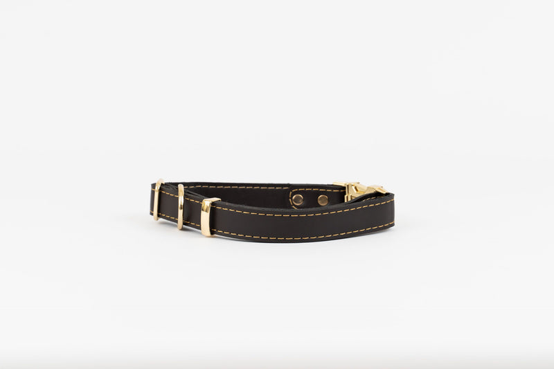 Milo Gold Leather Collar