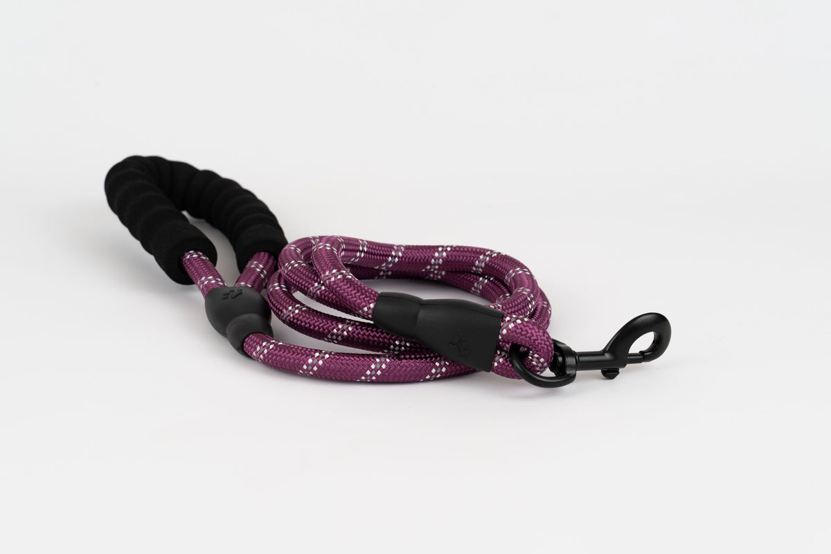 Sport leash maroon