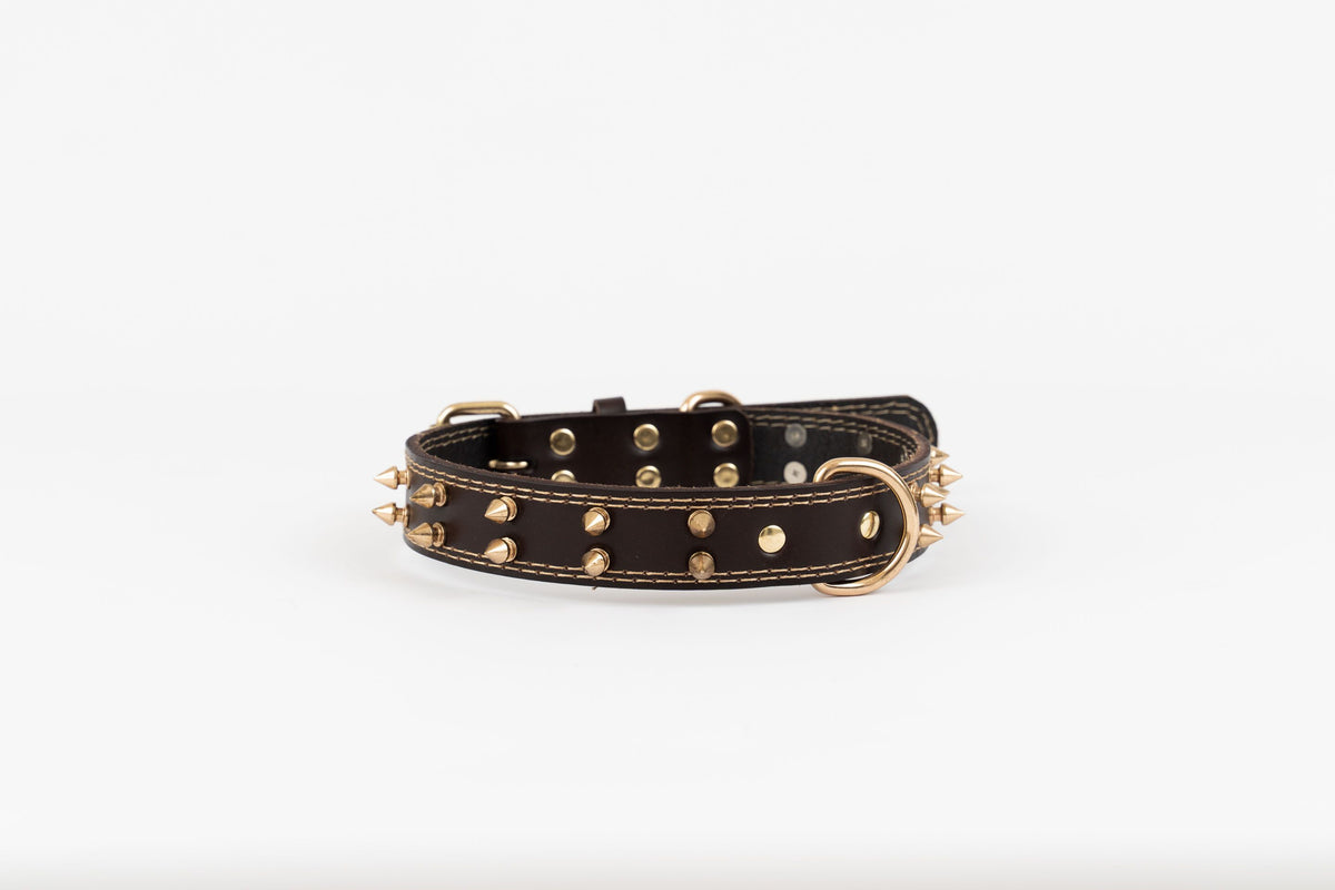 Spike Leather Collar