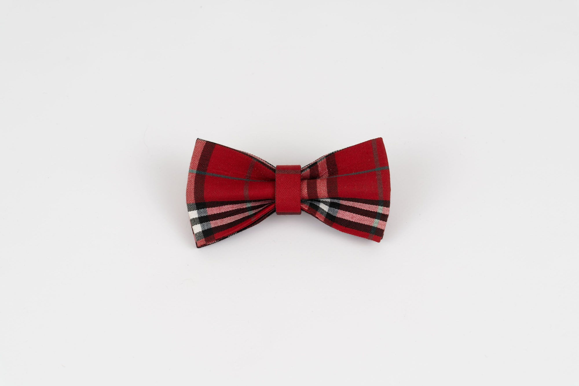 West Highland Dog Bowtie
