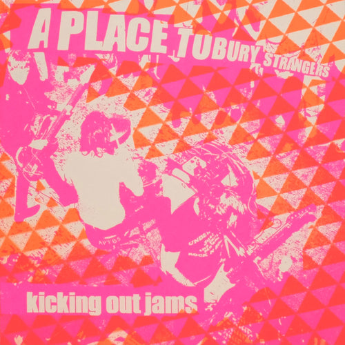 A Place To Bury Strangers: Kicking Out Jams