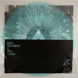 Brian Chippendale and Greg Saunier LP