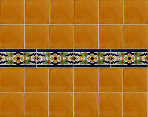 Mirabel Subway Mexican Tile