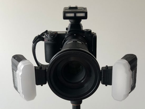 Meike MK-MT24 wireless macro flash system review  - By Steve Gong (Forum: Nikon Rumors)
