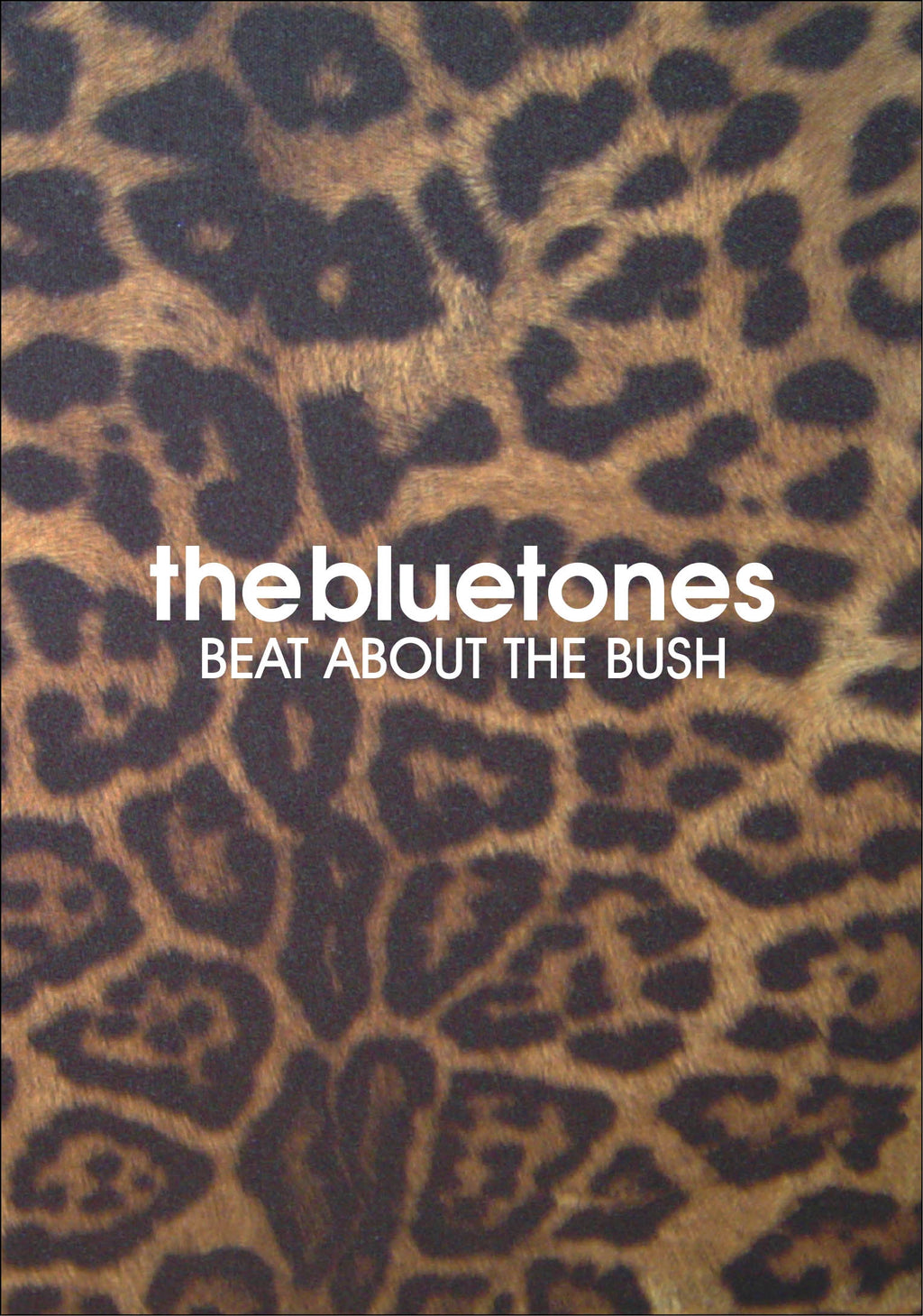 Bluetones - Beat About The Bush - DVD - Secret Records Limited