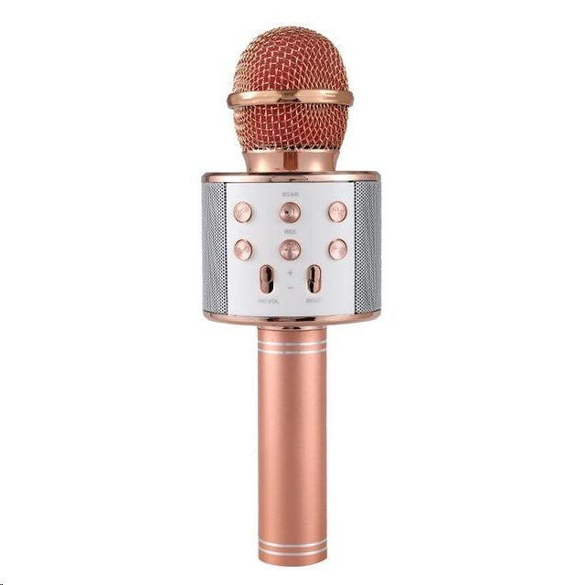 Wireless Bluetooth Karaoke Microphone - 💥50% OFF - New Year Promotion