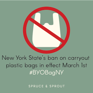 "NY's ""Bring Your Own Bag"" kicks off March 1st"
