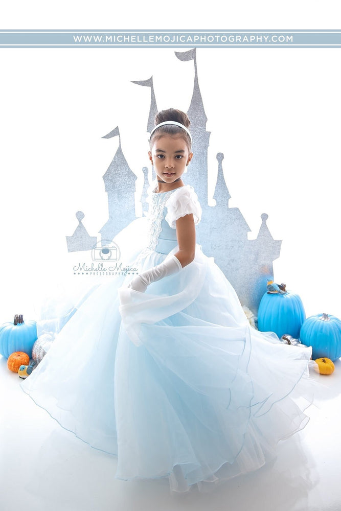 Princess Cinderella from Fairy Tale