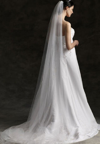 Plain Single Tier Cathedral Length Tulle Veil With Raw Edge