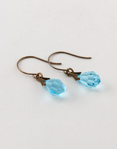 Jewel Drop Earrings, (1 pair)