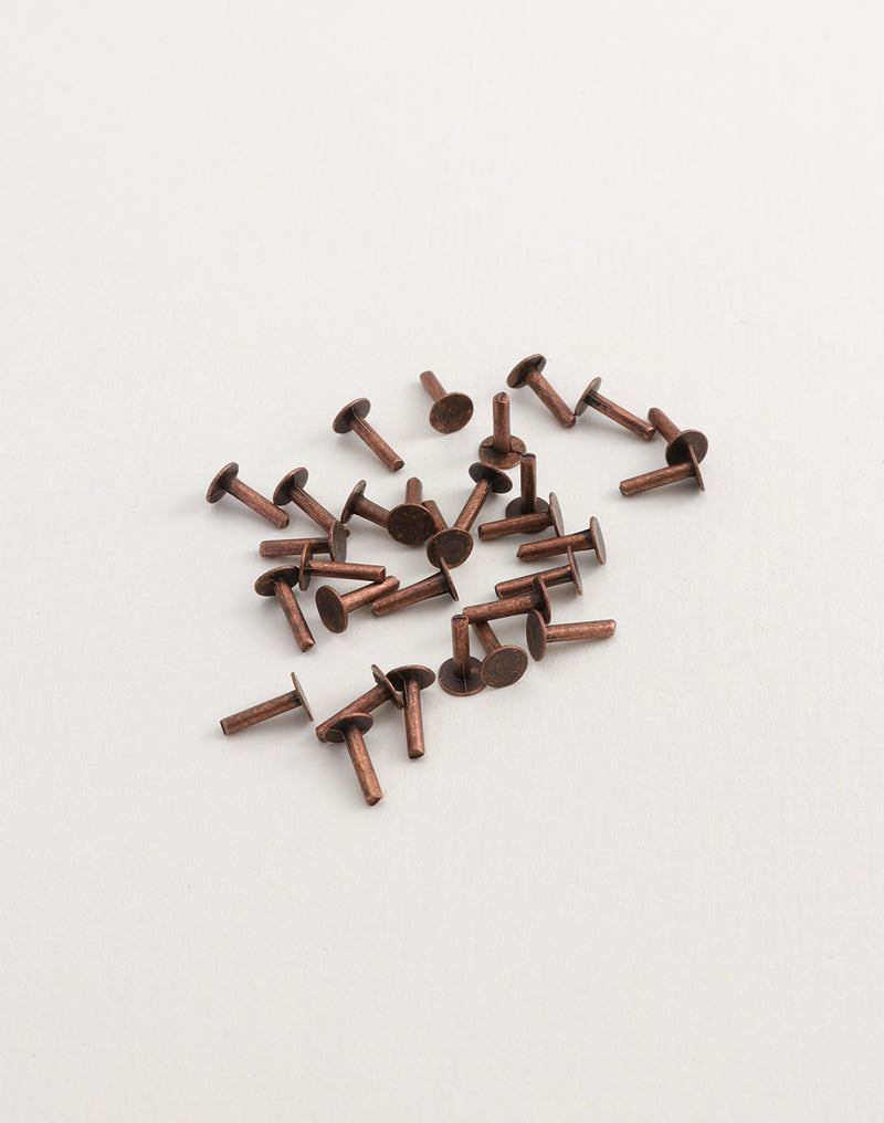 Nail Head Rivet, 1/4in, 30pcs