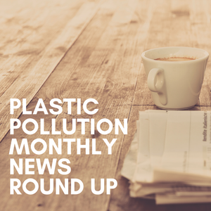 November's Plastic Pollution News & Headlines