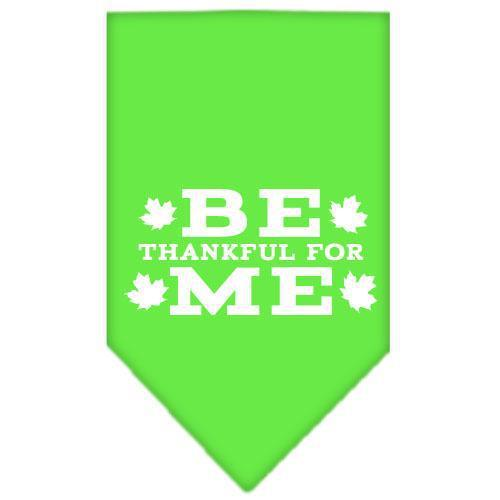 Be Thankful for Me Screen Print Bandana Lime Green Large-Be thankful for me screen print bandana dog bandanas-Bella's PetStor