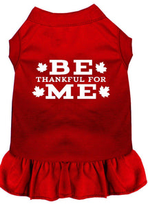 Be Thankful For Me Screen Print Dress Red-Dog Dresses-Bella's PetStor