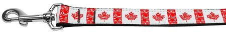 Canadian Flag In Swirls Nylon Dog Collar-DOGS-Bella's PetStor