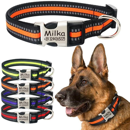 Collar, Personalized, Nylon, 4 Colors, XS-XL-Overseas-Bella's PetStor