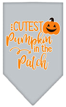 Load image into Gallery viewer, Cutest Pumpkin In The Patch Screen Print Bandana-Holidays-Bella's PetStor