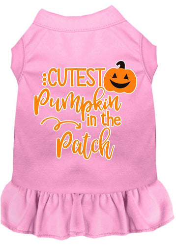 Cutest Pumpkin In The Patch Screen Print Dog Dress-Dog Dresses-Bella's PetStor