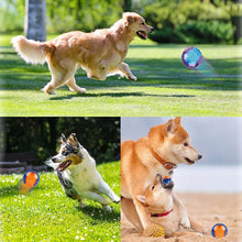 Load image into Gallery viewer, HOOPET Squeaky Chew Toy Non-toxic Rubber-Overseas-Bella's PetStor