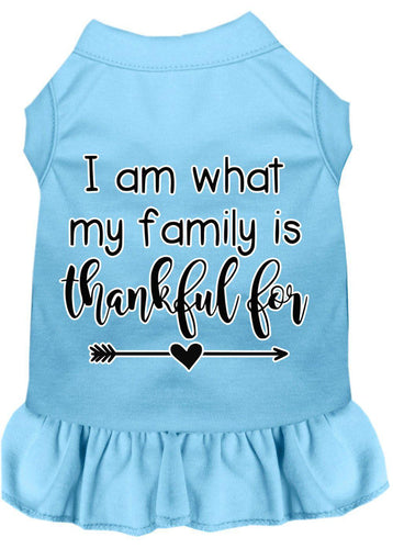 I Am What My Family Is Thankful For Screen Print Dog Dress-Thanksgiving-Bella's PetStor