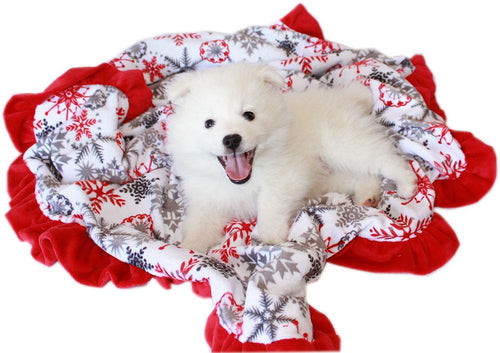 Luxurious Plush Carrier Blanket Red Snowflake-Bedding-Bella's PetStor