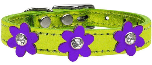 Metallic Flower Leather Collar Metallic Lime Green With Metallic Flowers Size-Dog Collars-Bella's PetStor