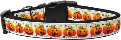 Pumpkin Parade Nylon Cat Collar-DOGS-Bella's PetStor
