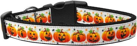 Pumpkin Parade Nylon Dog Collar-DOGS-Bella's PetStor