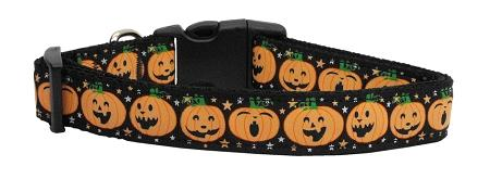 Pumpkins Nylon Dog Collar Medium Narrow-Dog Collars-Bella's PetStor