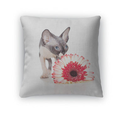 Throw Pillow, Canadian Sphynx Kitten With African Daisy Flower-Throw Pillow-Bella's PetStor