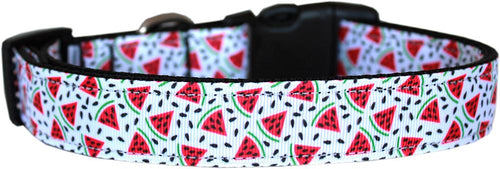 Watermelon Nylon Dog Collar-DOGS-Bella's PetStor