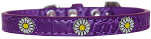 White Daisy Widget Croc Dog Collar Size-DOGS-Bella's PetStor
