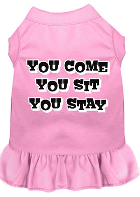 You Come, You Sit, You Stay Screen Print Dress Baby Blue-Dog Clothing-Bella's PetStor