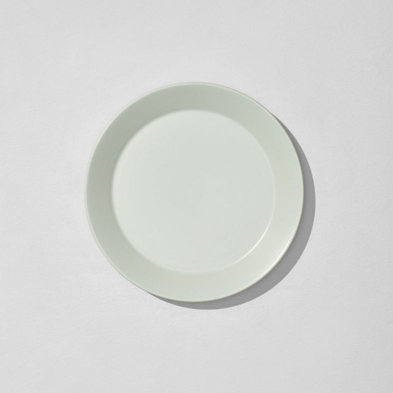 Overhead view of mint dinner plate